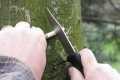 Stretko zálesáci pletenie korbáčov 2010